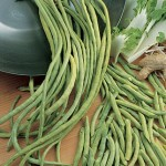 Bean, Asparagus Yardlong
