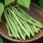Bean, Bush, Big Kahuna