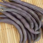 Royalty Purple Pod Bean Seed