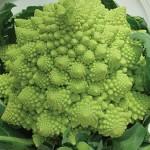 Broccoli, Romanesco