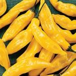 Pepper Hot Lemon