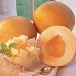 Melon Creme De La Creme Hybrid