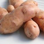 Potato Rose Finn Apple