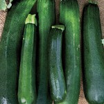 Squash Zucchini Black Beauty Organic