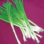 Onion Tokyo Long White